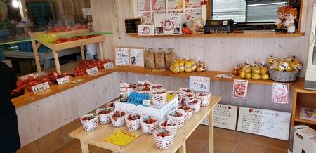 kosuzu farm1