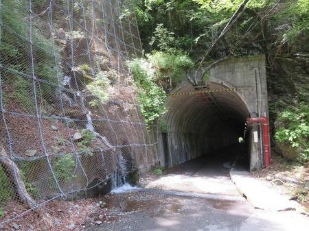 夢の吊橋5 トンネル
